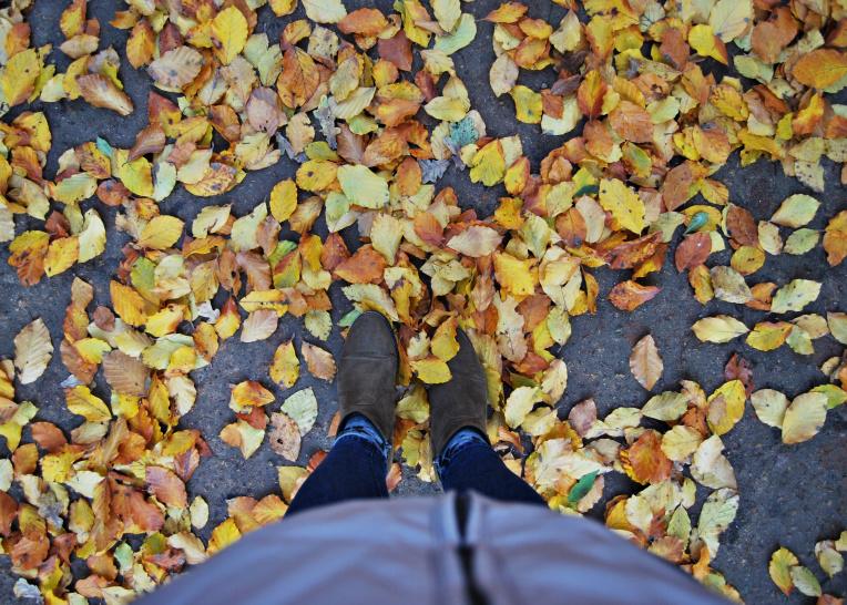 Jesień wBerlinie